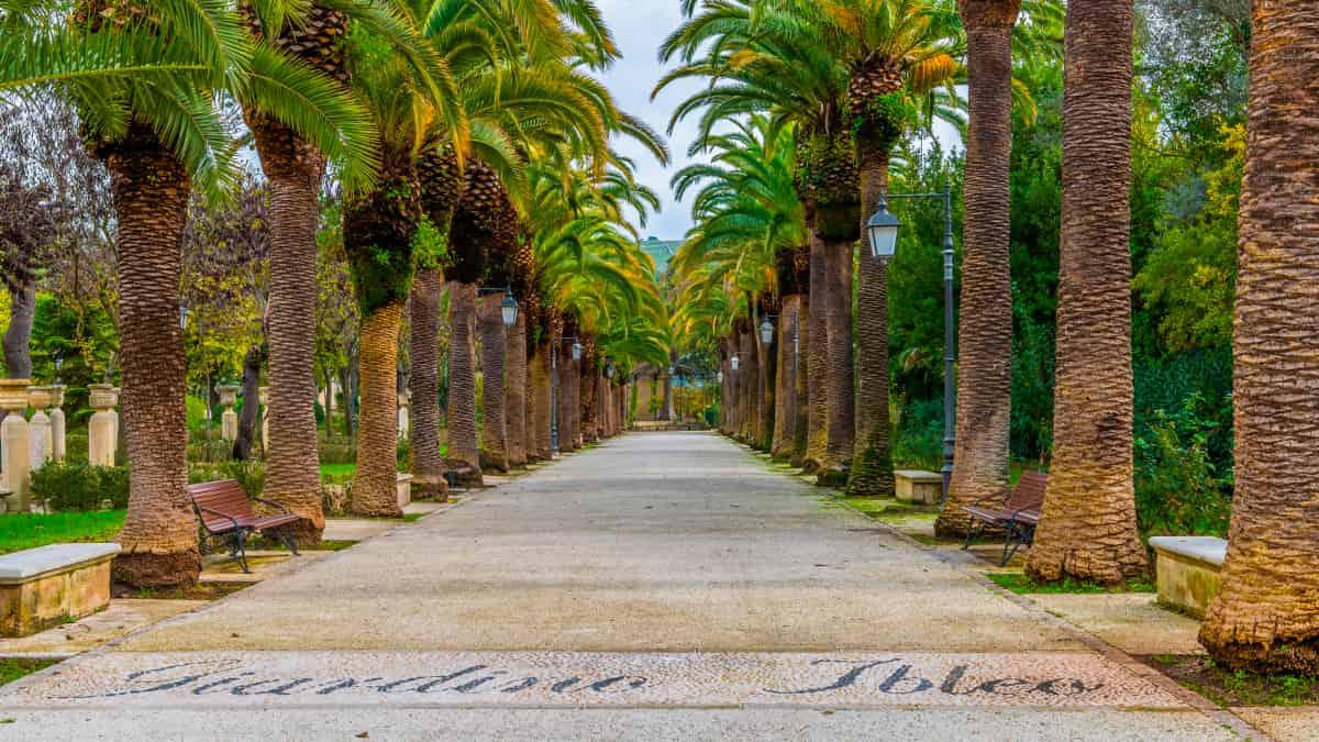 Viale alberato all'interno del Giardino Ibleo di Ragusa